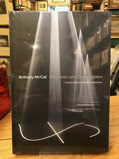 Image for Anthony McCall : Notebooks and Conversations